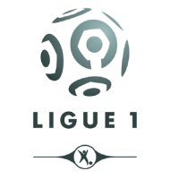 LFP Ligue 1 2008-2009