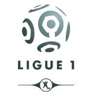 LFP Ligue 1 2008-2009